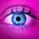 göz retina lens iris