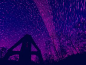 starlink black jack ağı uydu