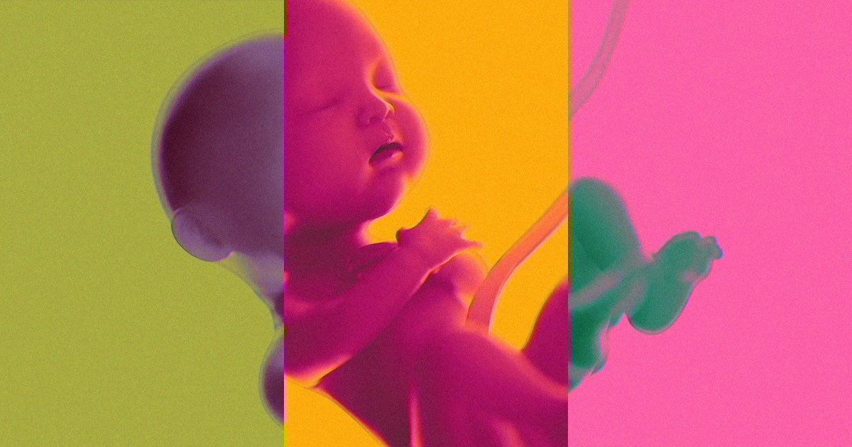mükemmel bebek gen crispr