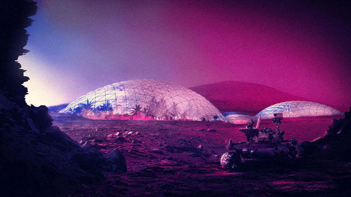 Elon Musk Mars Cam Kubbe
