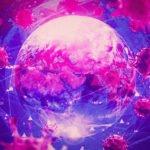 Dünyadaki herkes aşılansa bile koronavirüsten kurtulamayabiliriz
