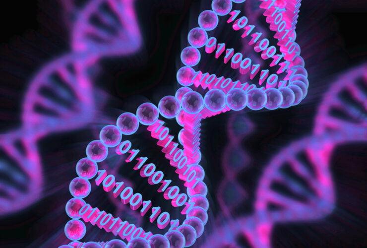 DNA veri depolama